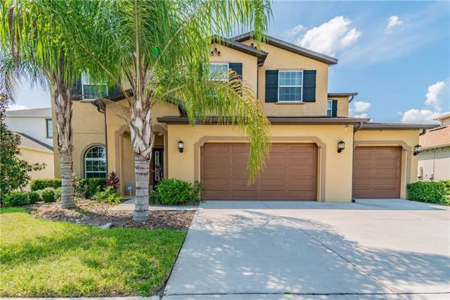 2589 Gwynhurst Boulevard, Wesley Chapel, FL 33543 (MLS #T3197944) :: Griffin Group
