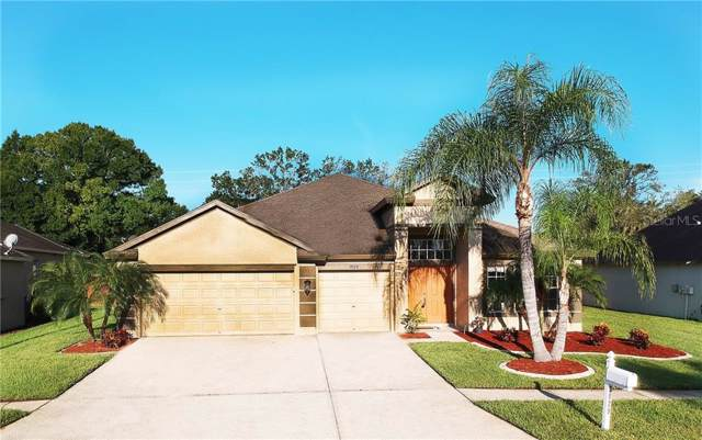 3929 Chaucer Way, Land O Lakes, FL 34639 (MLS #T3197951) :: The Duncan Duo Team