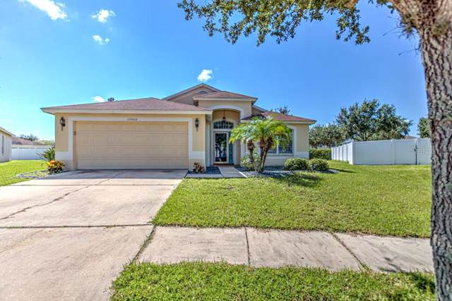 11003 Silver Dancer Drive, Riverview, FL 33579 (MLS #T3197982) :: Team Pepka