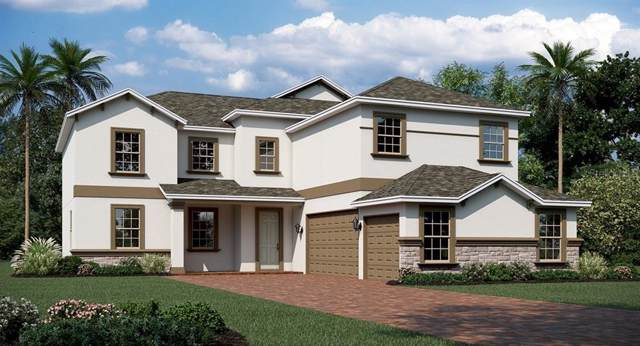 1698 Lake Sims, Ocoee, FL 34761 (MLS #T3198039) :: Rabell Realty Group