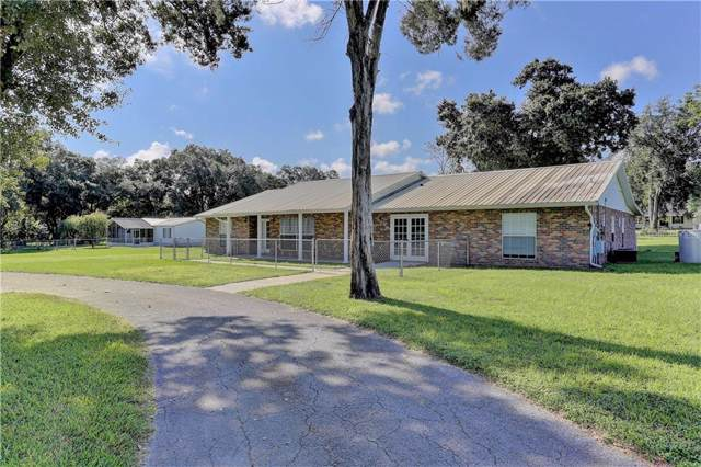 39746 Otis Allen Road, Zephyrhills, FL 33540 (MLS #T3198071) :: Homepride Realty Services