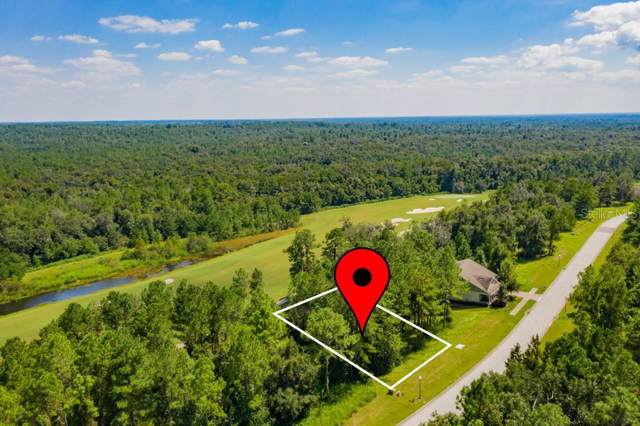 0 Southern Valley Loop, Brooksville, FL 34601 (MLS #T3198082) :: Homepride Realty Services