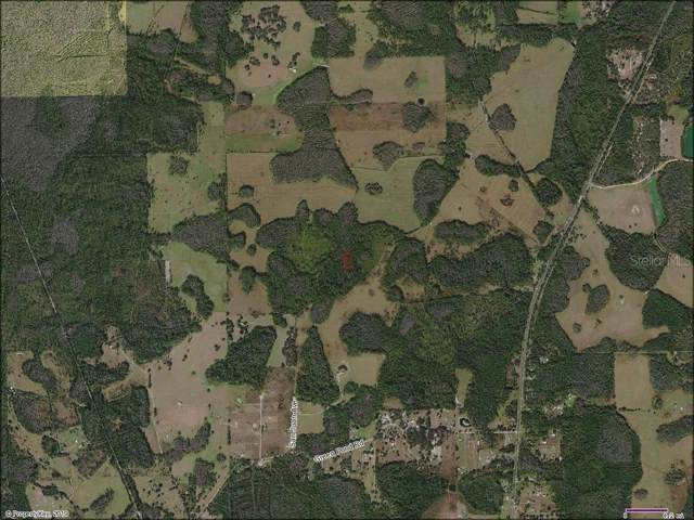 0 Commonwealth Avenue, Polk City, FL 33868 (MLS #T3198103) :: Cartwright Realty