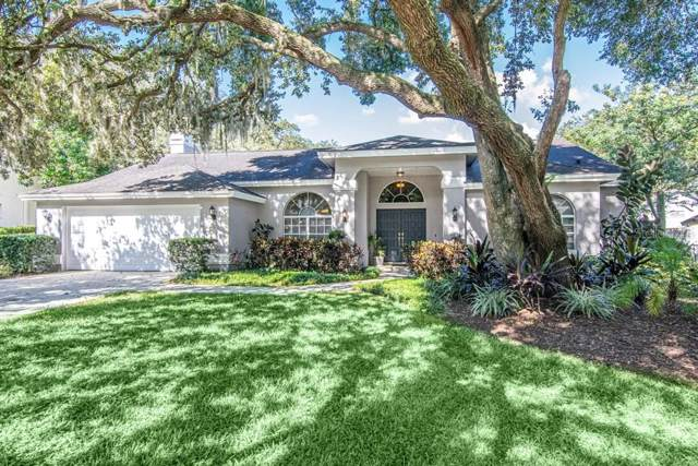 11408 Tullamore Place, Temple Terrace, FL 33617 (MLS #T3198121) :: Armel Real Estate