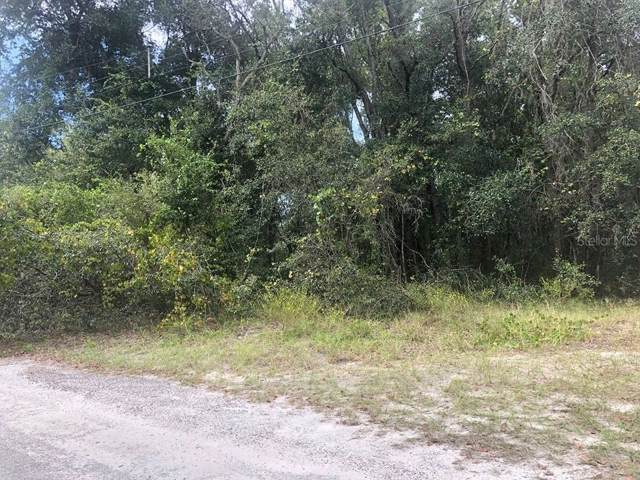 Lot 4 Block 2 Rutherford Lane, Hudson, FL 34669 (MLS #T3198183) :: Griffin Group