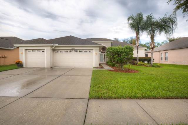20903 Cedar Bluff Place, Land O Lakes, FL 34638 (MLS #T3198189) :: Rabell Realty Group