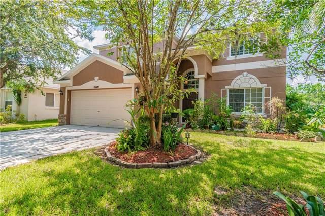 10489 Lucaya Drive, Tampa, FL 33647 (MLS #T3198193) :: Team 54