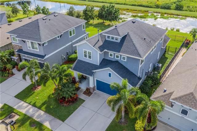 6520 Salt Creek Avenue, Apollo Beach, FL 33572 (MLS #T3198216) :: Team Pepka