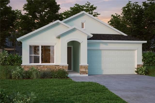 15150 Renaissance Avenue, Odessa, FL 33556 (MLS #T3198233) :: Baird Realty Group