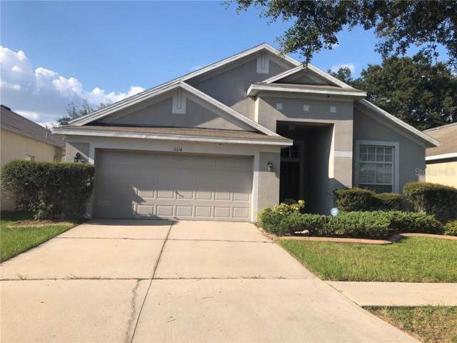 11114 Silver Dancer Drive, Riverview, FL 33579 (MLS #T3198236) :: Griffin Group