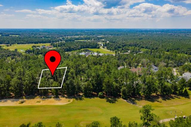 Sterling Bluff Way, Brooksville, FL 34601 (MLS #T3198240) :: The Duncan Duo Team