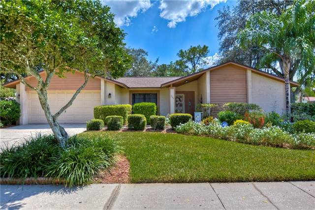 1203 Letona Lane, Valrico, FL 33596 (MLS #T3198330) :: Team Borham at Keller Williams Realty