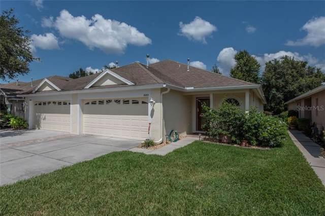 31205 Shaker Circle, Wesley Chapel, FL 33543 (MLS #T3198331) :: Baird Realty Group