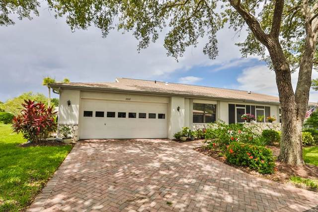 2507 Langtree Court, Sun City Center, FL 33573 (MLS #T3198334) :: The Figueroa Team