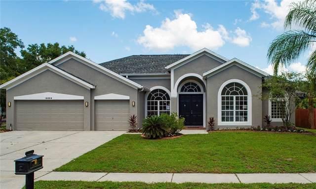 15853 Berea Drive, Odessa, FL 33556 (MLS #T3198343) :: Baird Realty Group