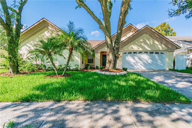 9542 Pebble Glen Avenue, Tampa, FL 33647 (MLS #T3198347) :: Cartwright Realty