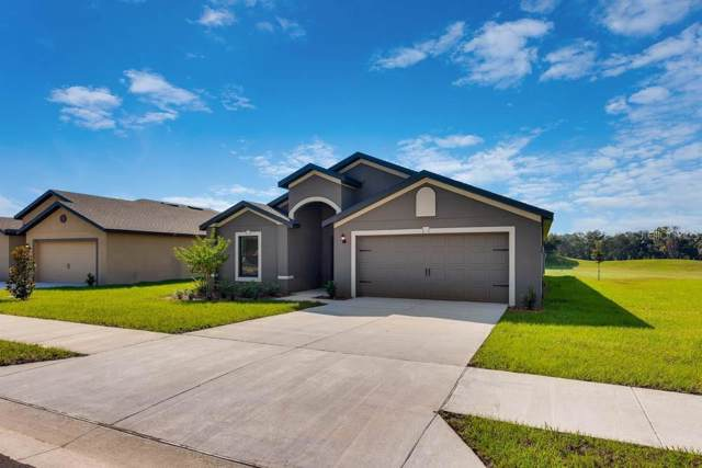 6900 Crested Orchid Drive, Brooksville, FL 34602 (MLS #T3198360) :: Delgado Home Team at Keller Williams