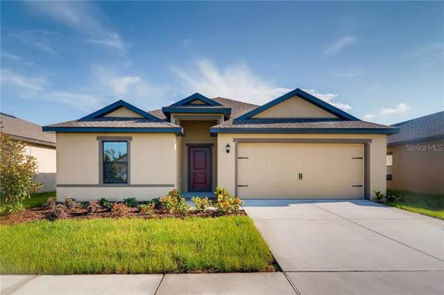 6953 Redbay Drive, Brooksville, FL 34602 (MLS #T3198362) :: Delgado Home Team at Keller Williams
