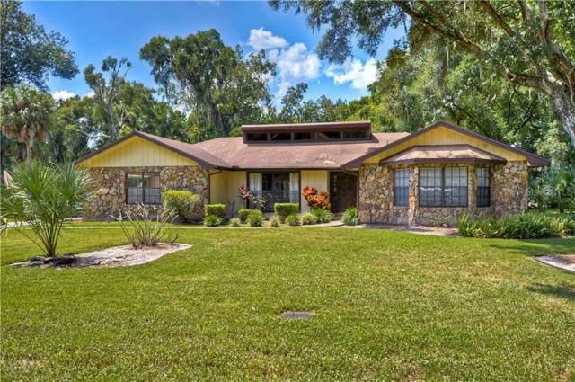 4619 Ridgecliff Drive, Brandon, FL 33511 (MLS #T3198383) :: Griffin Group