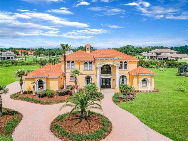2623 Tylers River Run, Lutz, FL 33559 (MLS #T3198457) :: Burwell Real Estate