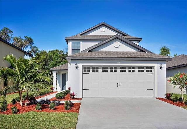 8607 Silverbell Loop, Brooksville, FL 34613 (MLS #T3198487) :: Cartwright Realty