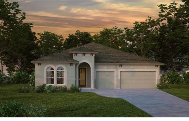 7324 Paradiso Drive, Apollo Beach, FL 33572 (MLS #T3198500) :: Griffin Group