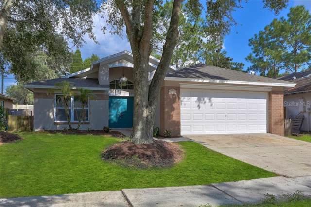 1830 Kettler Drive, Lutz, FL 33559 (MLS #T3198509) :: Team Borham at Keller Williams Realty