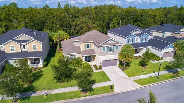 8853 Bella Vita Circle, Land O Lakes, FL 34637 (MLS #T3198511) :: Team Borham at Keller Williams Realty