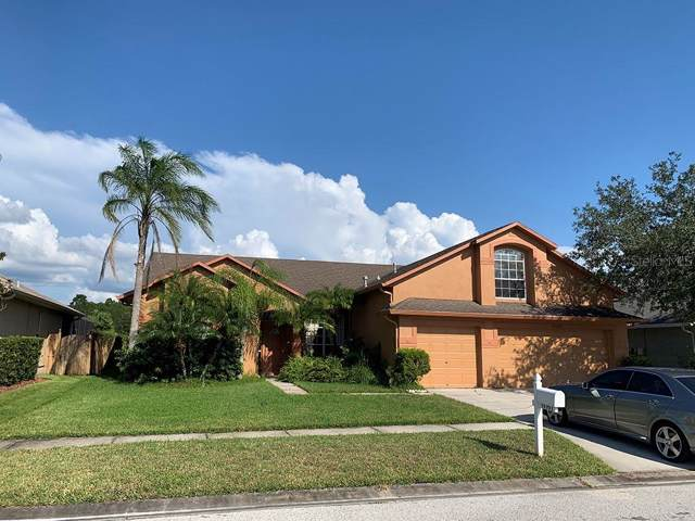 14703 Coral Berry Drive, Tampa, FL 33626 (MLS #T3198623) :: Griffin Group