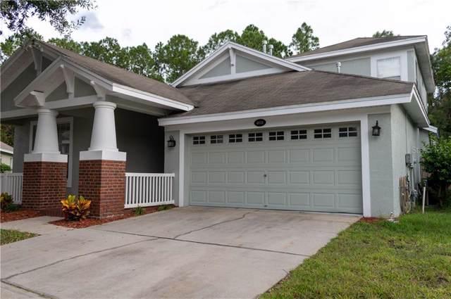 4810 Sky Blue Drive, Lutz, FL 33558 (MLS #T3198649) :: Team Borham at Keller Williams Realty