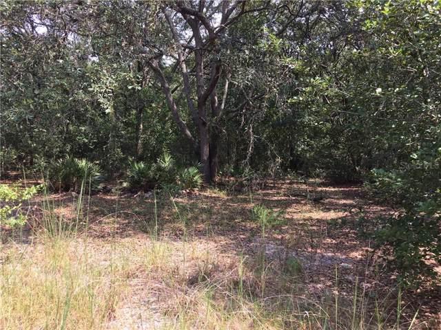 Wheystone, Webster, FL 33597 (MLS #T3198684) :: Burwell Real Estate