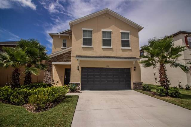 1595 Tallulah Terrace, Wesley Chapel, FL 33543 (MLS #T3198716) :: GO Realty