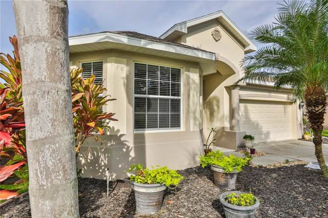 3919 91ST Avenue E, Parrish, FL 34219 (MLS #T3198726) :: EXIT King Realty