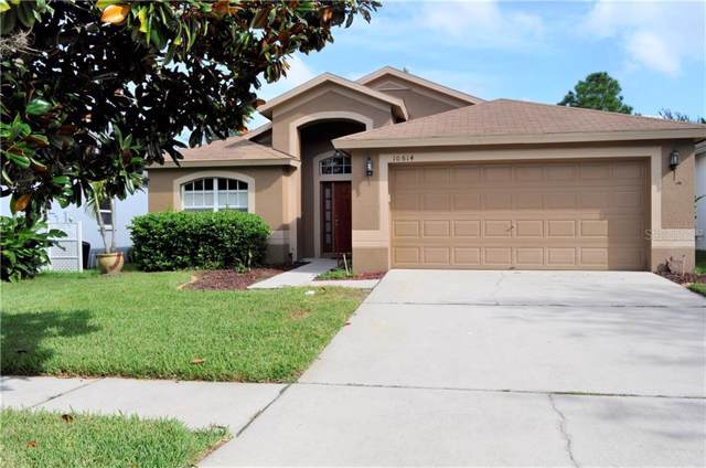 10614 Little Bend Lane, Riverview, FL 33579 (MLS #T3198755) :: Griffin Group