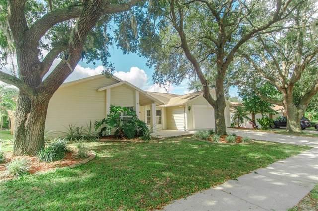 2554 Brimhollow Drive, Valrico, FL 33596 (MLS #T3198779) :: Team Bohannon Keller Williams, Tampa Properties