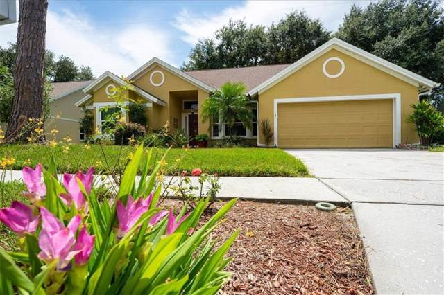 7211 Ridgeport Drive, Tampa, FL 33647 (MLS #T3198784) :: Team Bohannon Keller Williams, Tampa Properties