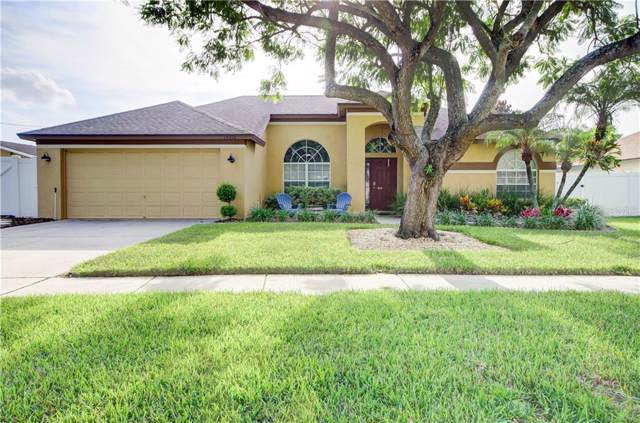14916 Redcliff Drive, Tampa, FL 33625 (MLS #T3198815) :: The Nathan Bangs Group
