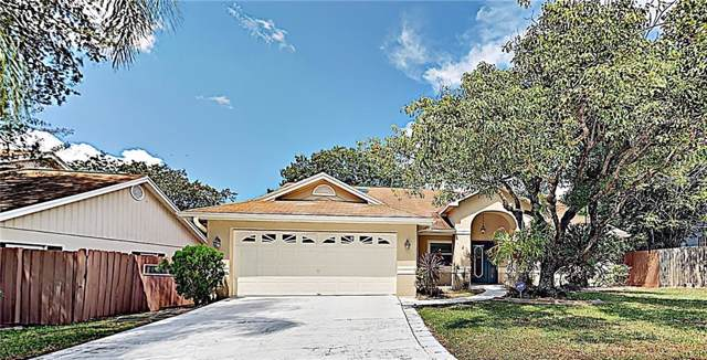 4963 Klosterman Oaks Boulevard, Palm Harbor, FL 34683 (MLS #T3198822) :: Team Borham at Keller Williams Realty