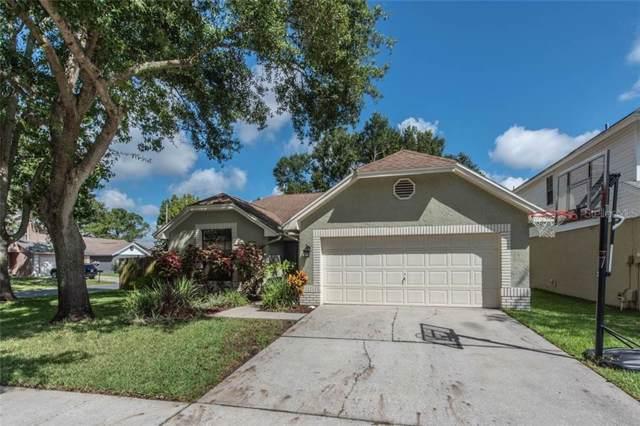 10902 Carnelian Lane, Riverview, FL 33578 (MLS #T3198842) :: Florida Real Estate Sellers at Keller Williams Realty
