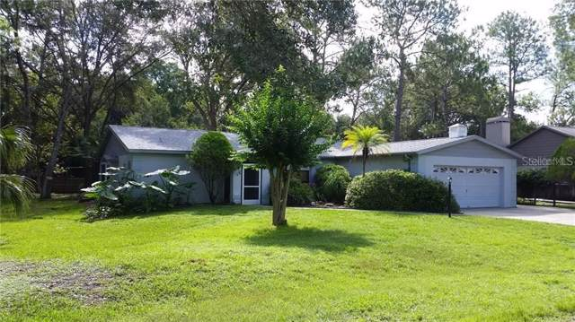 5402 Swallow Drive, Land O Lakes, FL 34639 (MLS #T3198847) :: Team 54