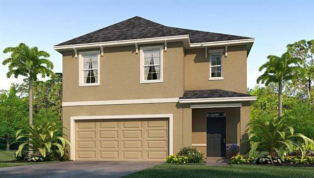 16769 Secret Meadow Drive, Odessa, FL 33556 (MLS #T3198852) :: The Nathan Bangs Group