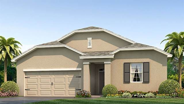 7038 Silverado Ranch Boulevard, Zephyrhills, FL 33541 (MLS #T3198867) :: The Robertson Real Estate Group