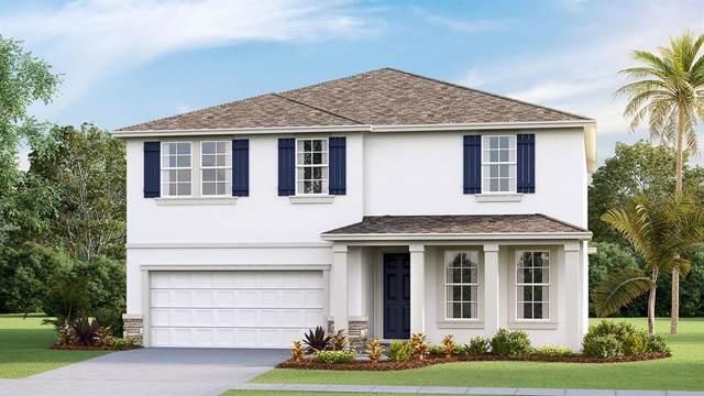 5143 Flowing Oar Road, Wimauma, FL 33598 (MLS #T3198874) :: Burwell Real Estate