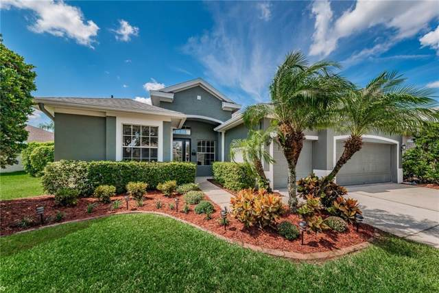 10612 Tavistock Drive, Tampa, FL 33626 (MLS #T3198890) :: Team Bohannon Keller Williams, Tampa Properties