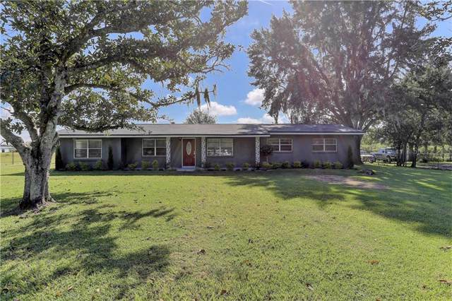 3959 Gallagher Road, Dover, FL 33527 (MLS #T3198892) :: The Duncan Duo Team