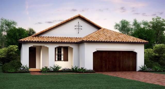 16804 Whisper Elm Street, Wimauma, FL 33598 (MLS #T3198902) :: Burwell Real Estate