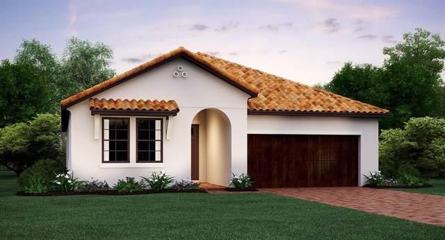 16848 Scuba Crest Street, Wimauma, FL 33598 (MLS #T3198906) :: Burwell Real Estate