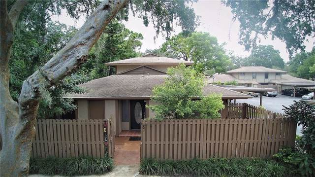 807 Antler Court, Brandon, FL 33511 (MLS #T3198907) :: Team Borham at Keller Williams Realty
