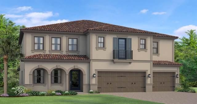 19905 Cypress Bridge Drive, Odessa, FL 33556 (MLS #T3198926) :: Team Bohannon Keller Williams, Tampa Properties