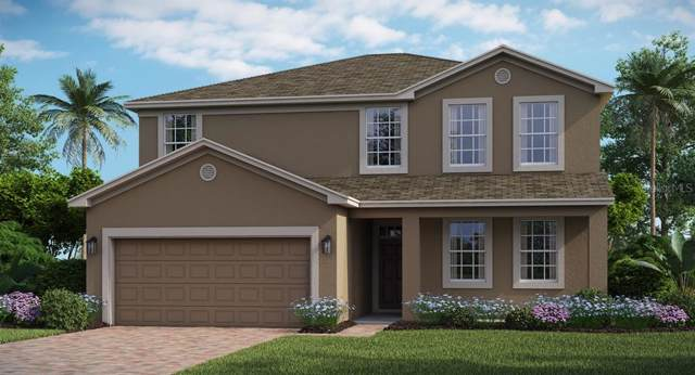 4392 Seven Canyons Drive, Kissimmee, FL 34746 (MLS #T3199074) :: Rabell Realty Group